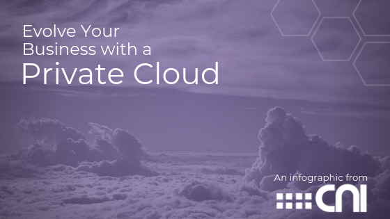 Private Cloud Benefits - Managed Hosting Services CNI